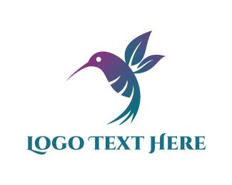 Colibri - Floral Hummingbird logo design