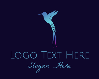 Colibri - Blue Gradient Hummingbird logo design