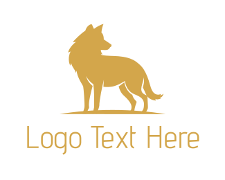 Vet - Golden Wolf logo design