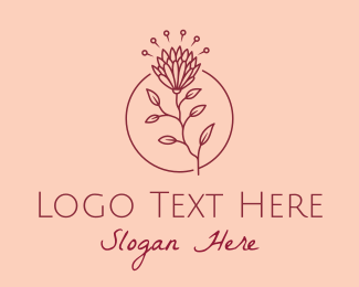 Chrysanthemum - Maroon Daisy Flower  logo design