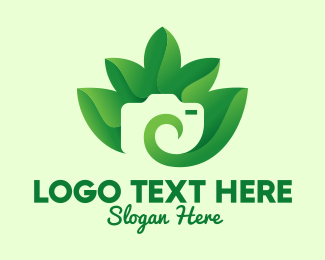 Environmentalist - Green Eco Leaves Camera logo design