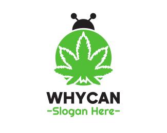 Bug Cannabis Bug logo design