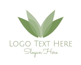 Lotus - Green Leaves logo design