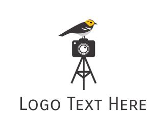 Educational - Gray Bird Photography logo design