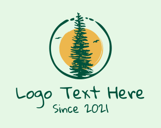 Provincial - Tall Conifer Forest Tree  logo design