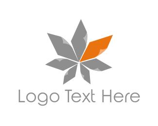 May - Maple Leaf logo design