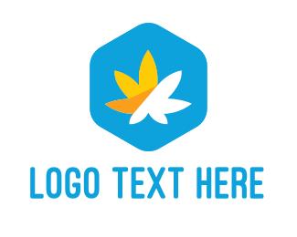Weed - Cannabis Hexagon logo design