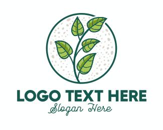 Tropical - Green Tropical Leaves logo design