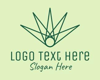 Palm Leaf - Green Abstract Palm Leaf logo design