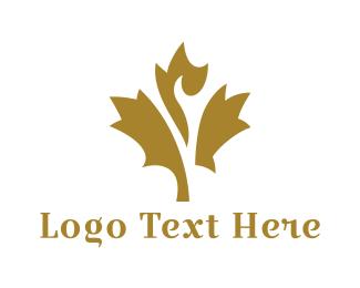 Citizenship - Gold Maple Leaf logo design
