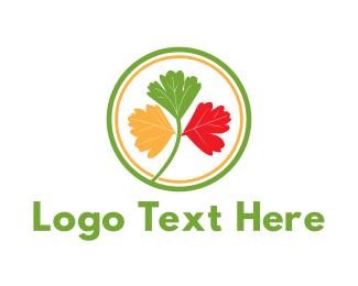 Kindness - Colorful Coriander logo design