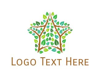 Branch - Star Branch logo design