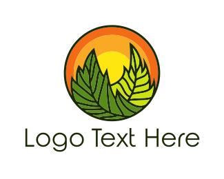 Vegan - Organic Sun logo design