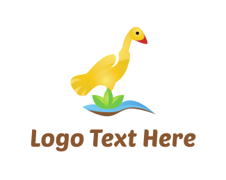 Pond - Yellow Duck logo design