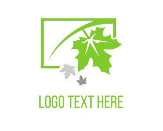 Autumn - Green Maple logo design