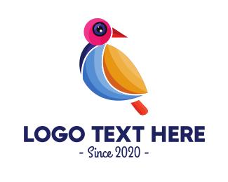 Paint Company - Colorful Pigeon Outline logo design