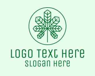 Marijuana - Geometric Cannabis Marijuana Leaf logo design