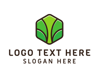 France - Green Hexagon Tree  logo design