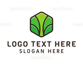 Organic Food - Eco Brand logo design
