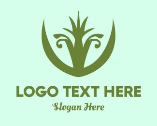 Succulent - Plant Queen logo design