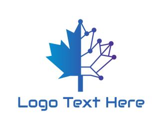 Wireframe - Blue Tech Canada logo design