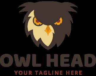 Teacher - Owl Head logo design
