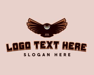 Aeronautics - Night Owl Gaming logo design