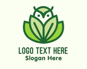 Little - Green Eco Owl Bird logo design