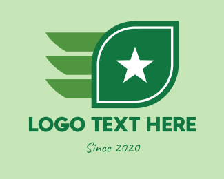 Pilot Training - Star Leaf Wings logo design