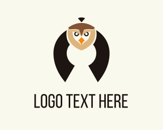 Point - Flying Owl logo design