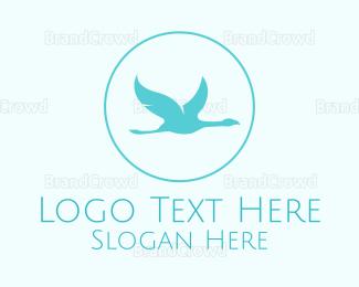 Conservation - Stylish Albatross logo design