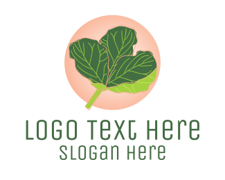 Plant Mom - Fiddle Leaf Fig Plant  logo design
