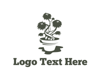 Hemp - Bonsai Pot logo design