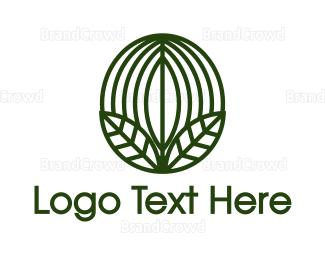 Barista - Green Coffee Bean Leaf  logo design