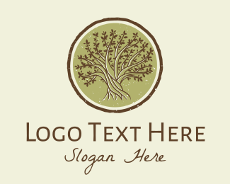 Branches - Gnarled Oak Tree logo design