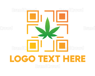 Cbd - Drug Code logo design