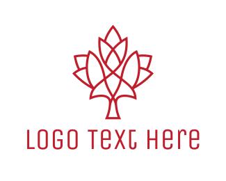 Modern Maple Leaf Logo