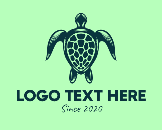 Wildlife Conservation - Sea Turtle Conservation logo design