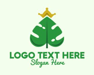 Monstera - Monstera Leaf Crown  logo design