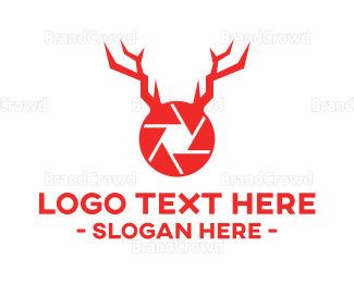 Wildlife - Wildlife Photography logo design