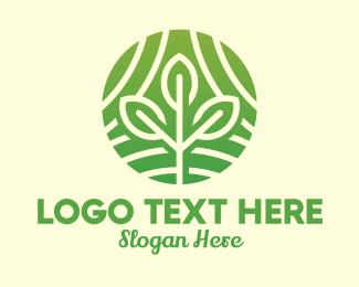 Evergreen - Organic Plant Farm logo design