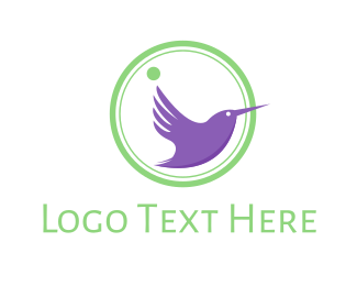 Colibri - Purple Hummingbird logo design