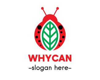 Bug Leaf  & Bug logo design