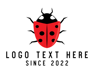 Red Insect - Shield Ladybug logo design