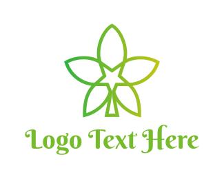 Cbd - Star Cannabis logo design
