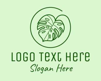 Monstera - Natural Monstera Leaf logo design