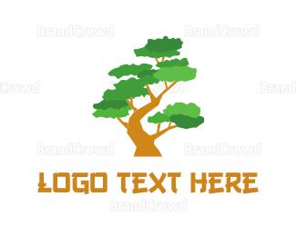 Cherry Tree - Bonsai Tree logo design
