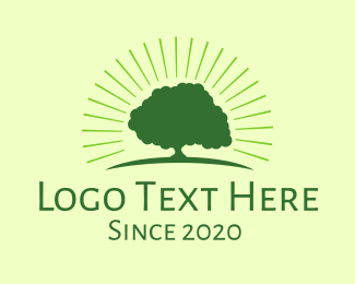 Green Bright Tree Logo