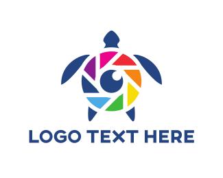 Tortoise - Camera Turtle logo design