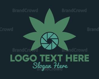Joint - Photo Cannabis logo design